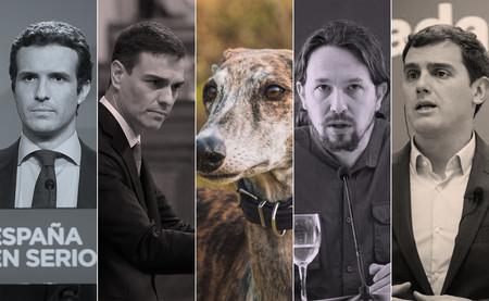 Caza y derechos animales: qué proponen todos los partidos en sus programas para las elecciones de 2019