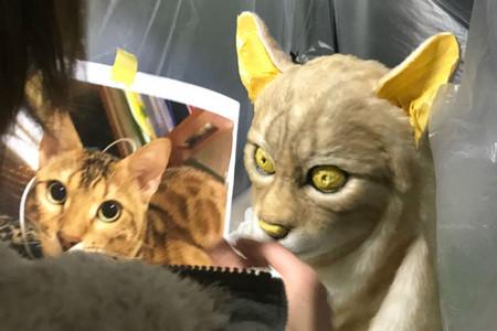 Gato Replica