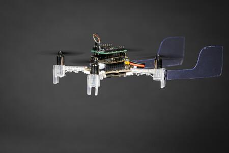 Este drone tiene el olfato de una polilla para guiarse, literalmente la antena de una polilla viva para detectar olores