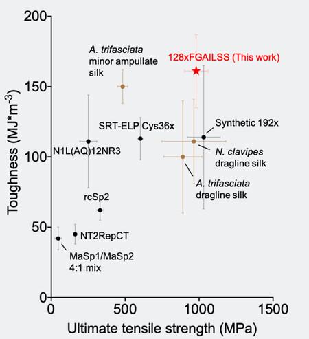Fuzhongspidersilkcomparison 760x833