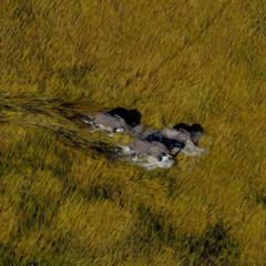 Foto 32 de 37 de la galería la-tierra-desde-el-cielo en Xataka Foto