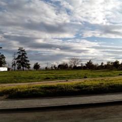 Foto 4 de 9 de la galería fotos-tomadas-por-bq-aquaris en Xataka Android