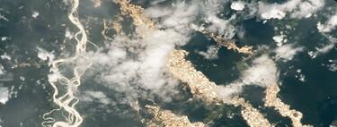 """NASA muestra los """"ríos de oro"""" en el Amazonas vistos desde el espacio: una impactante imagen de la minería ilegal"""