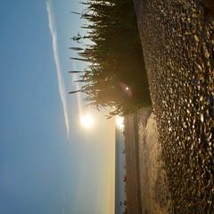 Foto 16 de 24 de la galería fotografia-pocophone-f1 en Xataka