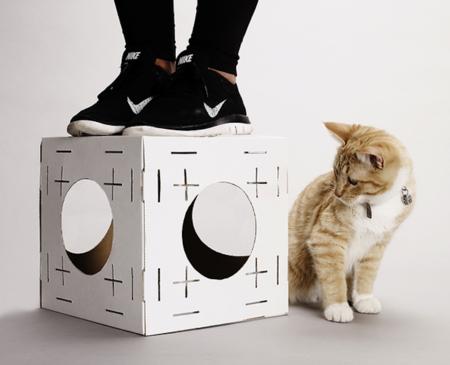 Casa Carton Gato