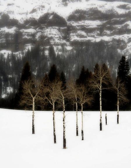 4-paisajes-pro.jpg