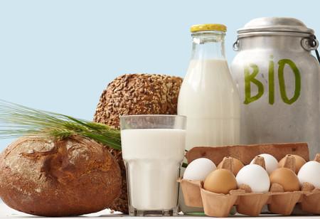 ¿Qué pautas debe cumplir un alimento para ser ecológico?