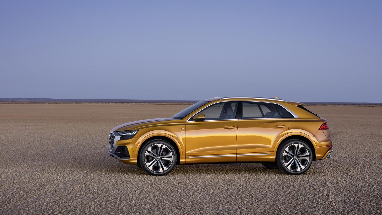 Foto de Audi Q8 2019 (15/33)