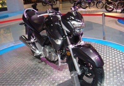 Suzuki GW250, cariño he encogido la B-King