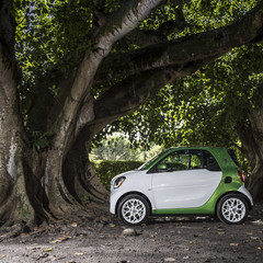 Foto 141 de 313 de la galería smart-fortwo-electric-drive-toma-de-contacto en Motorpasión