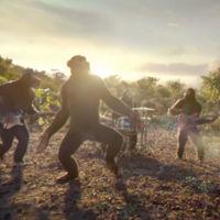 Antes de evolucionar, el mono ya conocía la música... de Coldplay
