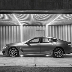 Foto 78 de 159 de la galería bmw-serie-8-gran-coupe-presentacion en Motorpasión
