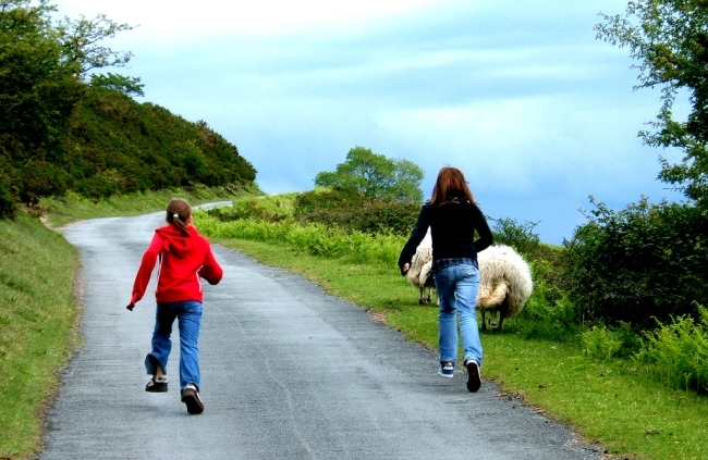 niños viaje