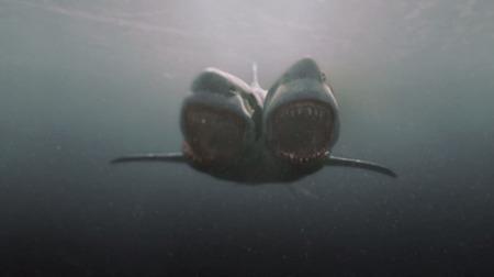 Trash entre amigos: Vigalondo salva 'El ataque del tiburón de dos cabezas'