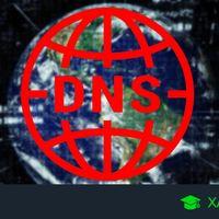 Mejores DNS de 2020: elige los más rápidos, seguros y privados