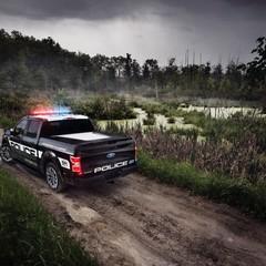 Foto 6 de 9 de la galería ford-f-150-police-responder en Motorpasión México