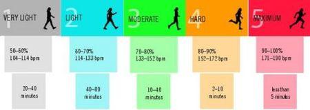 Calcula tu frecuencia cardíaca máxima
