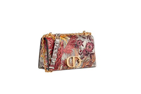 Dior Cruise 2020 New 30 Montaigne Bag 1