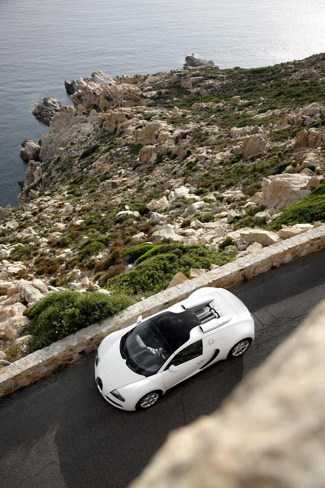 Foto de Bugatti Veyron Grand Sport (7/29)
