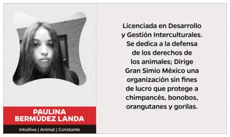 Paulina Bermudez