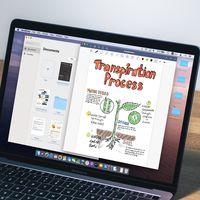 Estas son las primeras apps Catalyst que ya puedes descargar: llegan del iPad a macOS Catalina