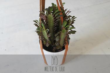 Plantas felices: este macetero de cuero les encantará