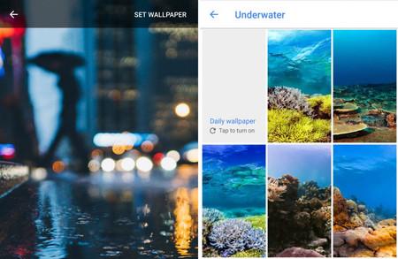 La aplicación de Fondos de Google añade más categorías de wallpapers, ¿solo para Pixel?