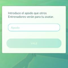 Foto 7 de 12 de la galería pokemon-go en Xataka