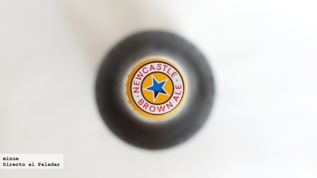 Newcastle Brown Ale - Cata de cerveza - 2