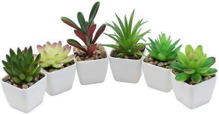 plantas artificiales decorativas