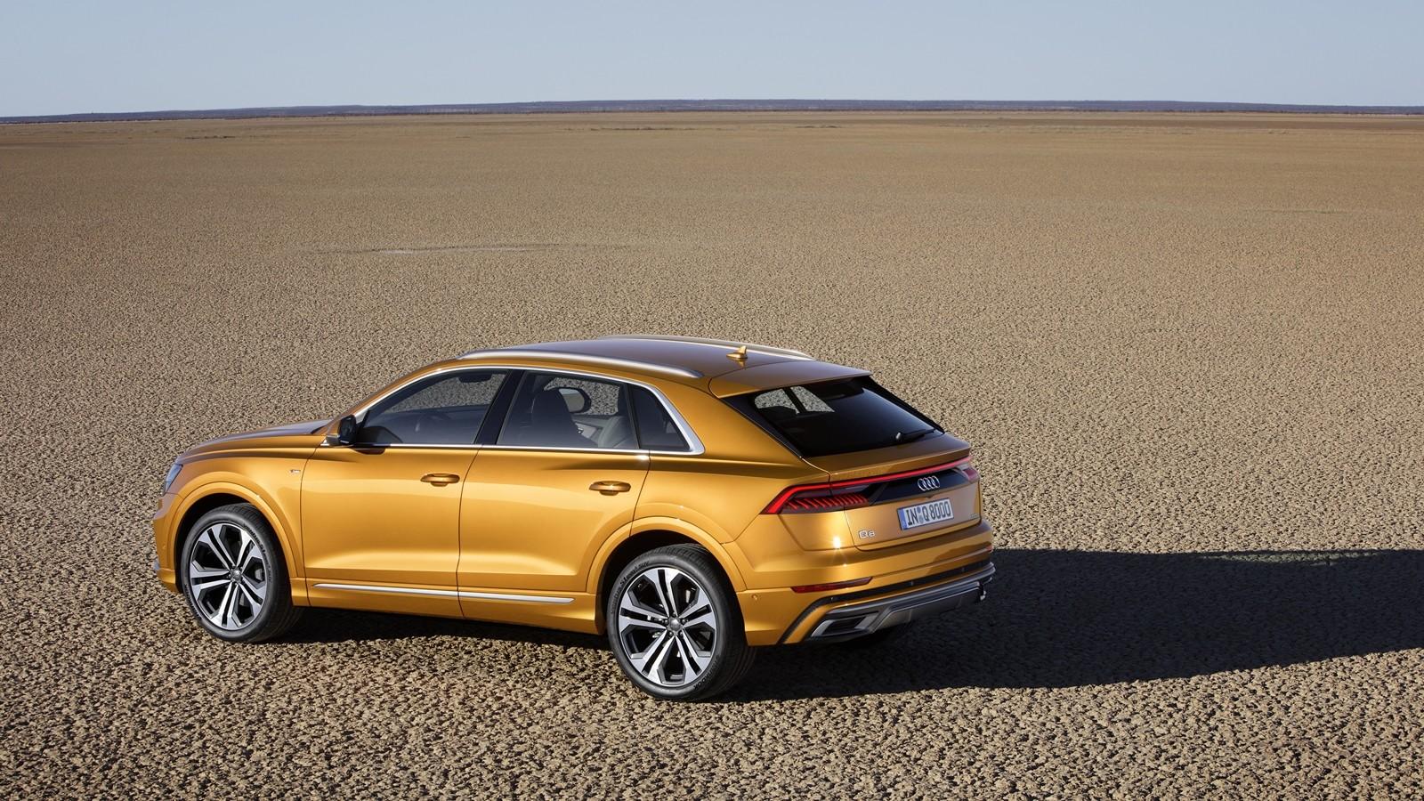 Foto de Audi Q8 2019 (11/33)
