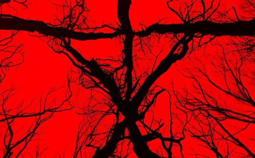 'Blair Witch', una oportunidad desperdiciada