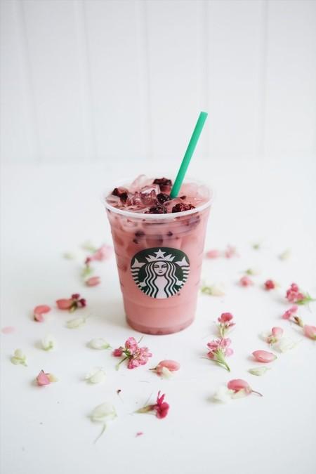 Lady Gaga Cups Of Kindness Starbucks Violet Drink