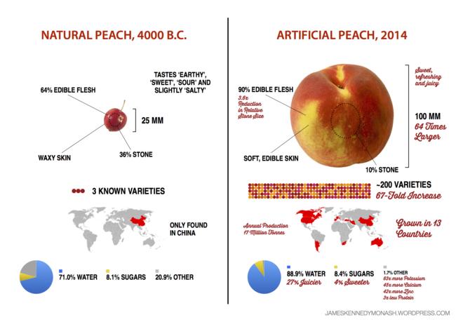 Artificial Natural Peach2