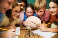 Las lesiones en la médula espinal pueden causar daño cerebral posterior