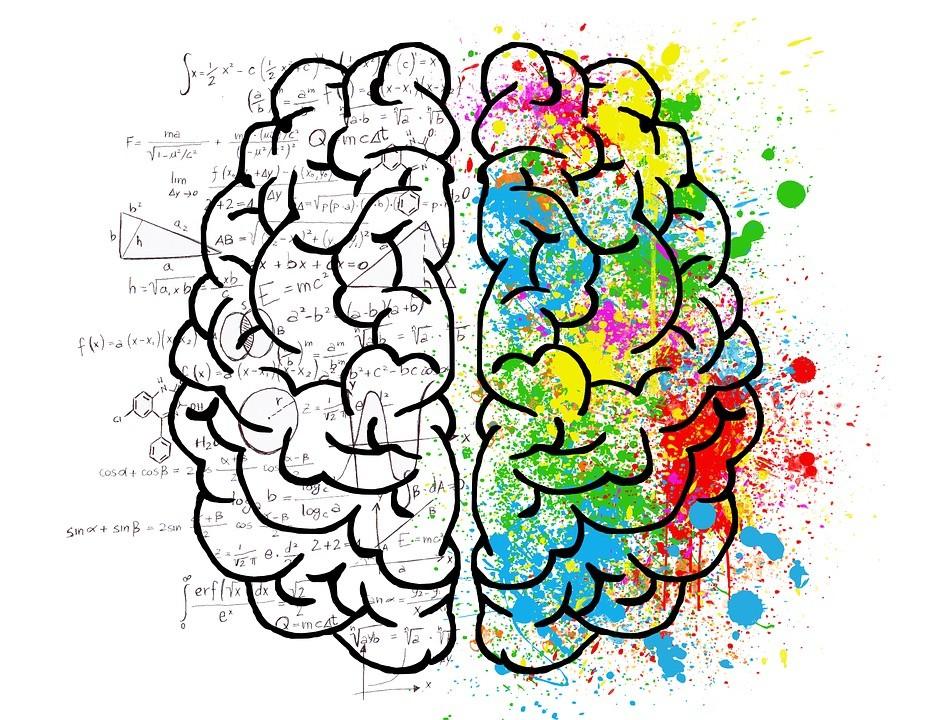 elneuroblogSg (enriquecido) - Una estructura para crecer en conocimiento gracias a nuestras redes, y viceversa - Cover