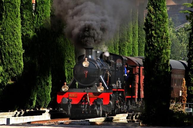Tren De La Fresa 2017 4