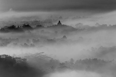 Trucos y consejos para hacer fotografías de niebla y neblina