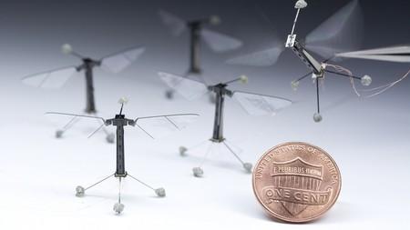 Estos robots de 80 milímetros ya empiezan a comportarse como insectos