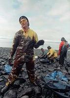 Antropo-visión en el ecologismo: ejemplo del Exxon Valdez