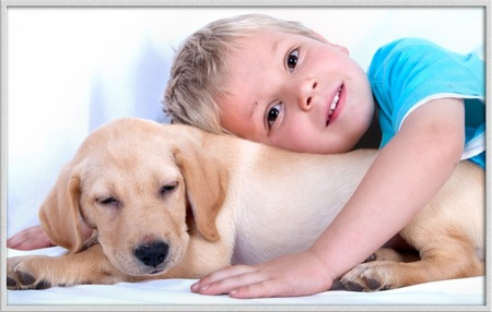 El famoso perrito de Scottex celebra su 40 cumpleaños