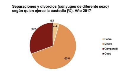 Custodias Ine 2017