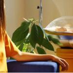 Parturient, un útero externo capaz de gestar un bebé en el salón de tu casa