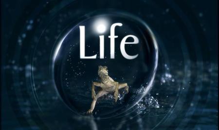 'Life', La 2 (y todos nosotros) nos rendimos al poder de la BBC