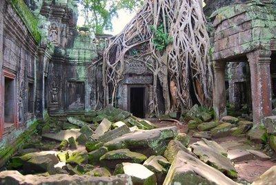 Camboya: la selva vence al hombre en Ta Prohm