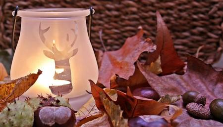 Compañeros de ruta: llega el otoño pero podemos seguir viajando