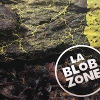 """Blob, el organismo """"sin cerebro y 720 sexos"""" del Zoo de París es más interesante de lo que parece: es un ordenador biológico"""