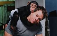 Mark Wahlberg protagonizará lo nuevo de Rupert Wyatt