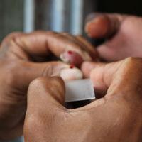 Cómo Europa ha erradicado la malaria y qué podemos aprender de ello