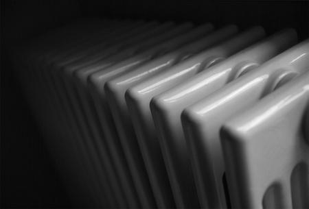 """Tres humidificadores """"naturales"""" para respirar mejor en casa"""